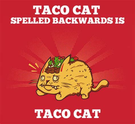 Taco Meme - spelling taco cat when you see it know your meme