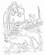 Coloring Coyote Animal Printable sketch template