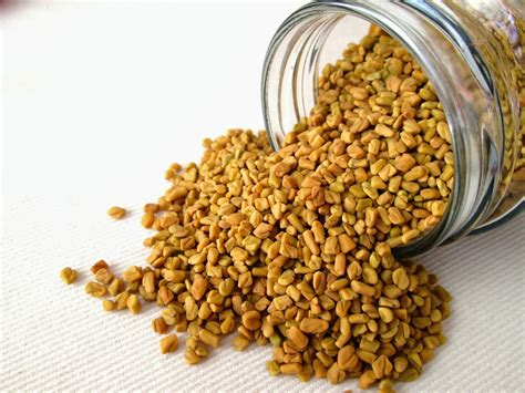 Fenugreek For Hair Growth Kinkycurlycoilyme