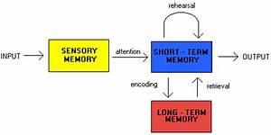 Memory Map - Brain Spot