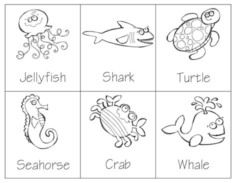 montessori sea animal 3 part cards great for vocabulary 542 | 6dbcb7c6e502697c384604d59de040de