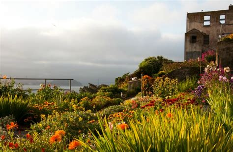 alcatraz gardens 10 landscape design projects that turned neglected spaces into incredible parks the garden