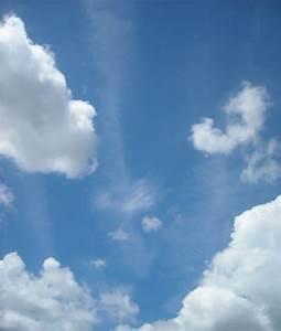 Artfully, Graced, Blue, Skies, Smiling, At, Me