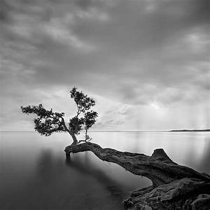 Beautiful Black and White Landscape Photography ...