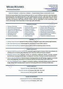 contemporary best professional resume writers elaboration With top professional resume writers