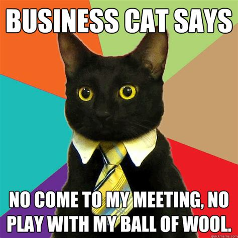 Meme Business Cat - business cat says no come to my meeting no play with my ball of wool business cat quickmeme