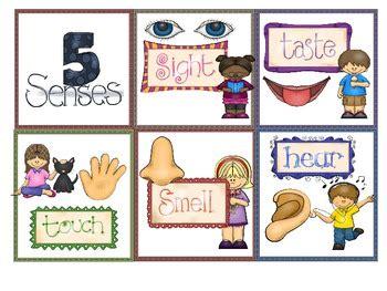 senses poster  individual cards  mrsd tpt