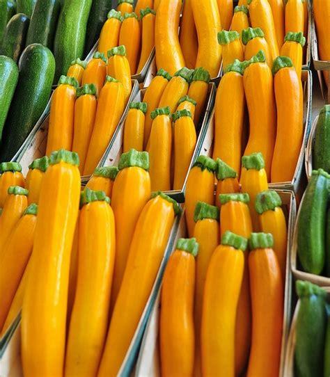 cuisiner courgette jaune les 109 meilleures images du tableau le jaune sur