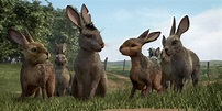 Watership Down Photos Unveiled as Rosamund Pike Joins ...