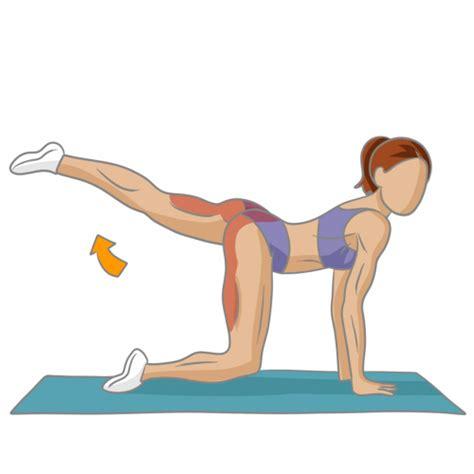 bien se muscler les fesses musculation