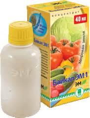 Байкал эм-1 при псориазе