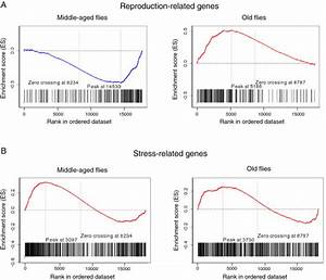 Gene Set Enrichment Analysis with stress- and reproduction ...