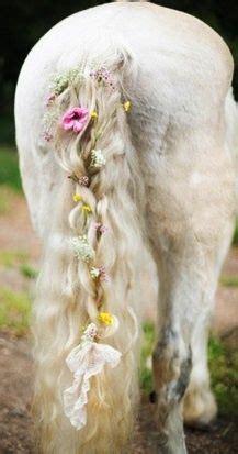flower horse google search horse flowers horse