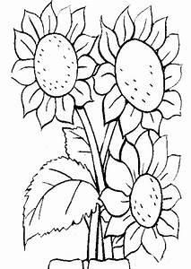 Blumen Zum Ausdrucken : wellcome to image archive ausmalbilder blumen ~ Watch28wear.com Haus und Dekorationen