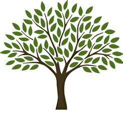 Clipart Pictures Templates Family Tree Template Png Tree Of Search Tree Silhouettes Vectors