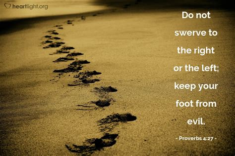 proverbs  daily wisdom  wednesday july