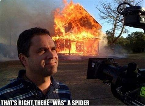 Spider In House Meme - how to deal with a spider kill it with fire know your meme