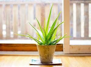 Come arredare una veranda: 5 idee originali Sgaravatti eu