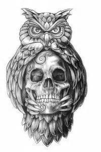 Die 479 besten Bilder zu Eulen Tattoo   Eulen tattoo