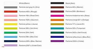 Code Couleur Pantone : porte cl s tissu mspie ~ Dallasstarsshop.com Idées de Décoration