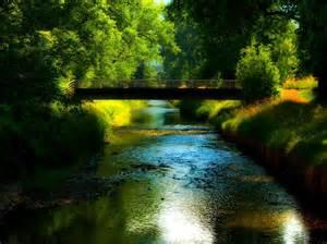 pont forêt fond d 39 écran