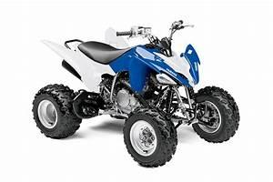 Quad Yamaha 250 : 2013 yamaha raptor 250 the middleweight motocross atv autoevolution ~ Medecine-chirurgie-esthetiques.com Avis de Voitures