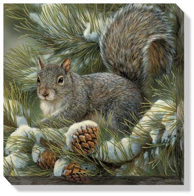 gray squirrel wrapped canvas wall art