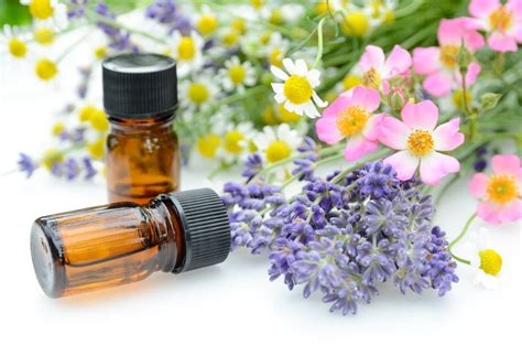 How Is Essential Oil Distilled?  Nature's Sunshine