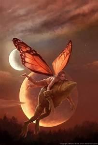 fairy guy carrying toad full moon magic fantasy ...