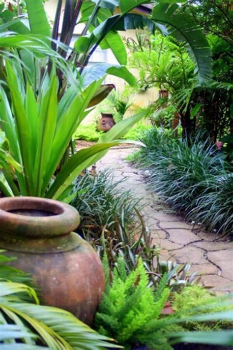 refreshing tropical landscaping ideas