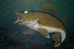 Walleye Fishing Painting by Kevin Breyfogle