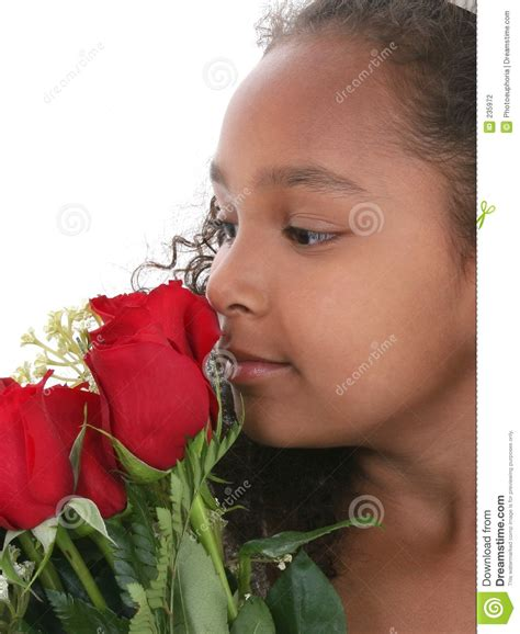 smelly roses image gallery sniffing roses