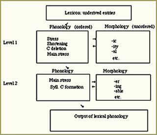 advanced phonology linguistics  philosophy mit