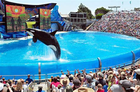 Seaworld San Diego Have Last Orca Show Sunday Kpbs
