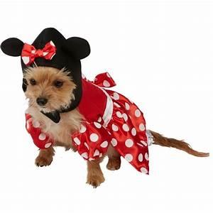 Video Pour Chien : d guisement pour chien minnie mouse disney d guisements pour chiens ~ Medecine-chirurgie-esthetiques.com Avis de Voitures