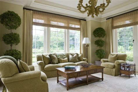 sidelight window treatments living room traditional
