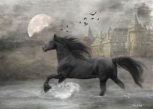 black horse, stallion, running, water, moon, castle ...