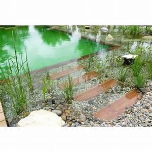 prix piscine naturelle prix et tarifs d 39 une piscine With prix piscine naturelle autoconstruction