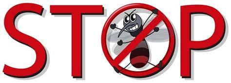 Hilfe Gegen Mücken In Der Wohnung