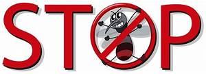Was Tun Gegen Mücken Im Zimmer : m cken vertreiben hausmittel m cken in der wohnung bek mpfen ~ Lizthompson.info Haus und Dekorationen
