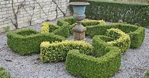 Ersatzpflanze Für Buchsbaum : knotengarten anlegen mit buchsbaum mein sch ner garten ~ Buech-reservation.com Haus und Dekorationen