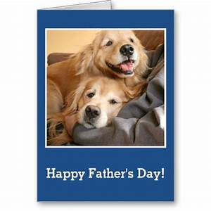 100+ best images about Golden Retriever Greeting Cards ...