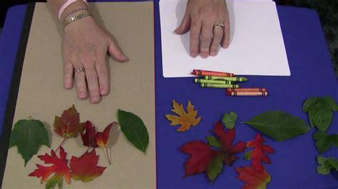 leaf rubbings youtube