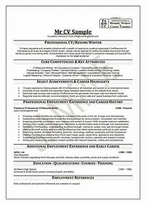 best professional resume writing services letters free With the best resume writing services