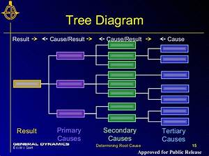 2 5 Root Cause