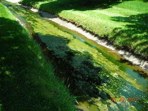 lincolnnegov watershed management home  lawn care