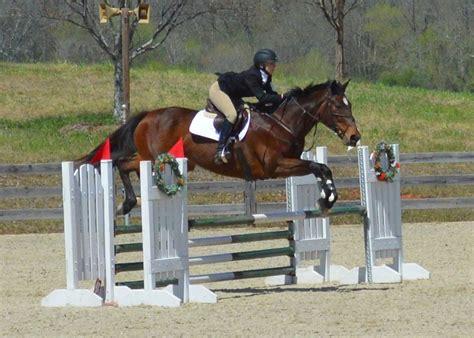 MSU introduces new equestrian club sport   Mississippi ...