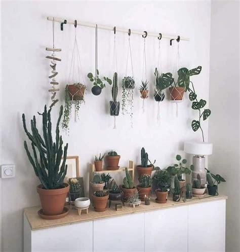 pflanzen zum aufhängen eine rute zum aufh 228 ngen pflanzen aufhangen pflanzen kakteen pflanzen dekor pflanzen