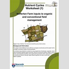 Nutrientcycles Worksheets And Introduction By Kateecologicalfarming  Teaching Resources Tes