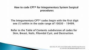 How To Code Cpt U00ae For Integumentary System Surgical
